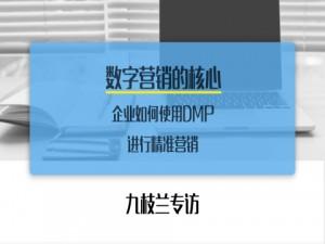 九枝兰专访:数字营销的核心—企业如何使用数据管理平台(DMP)进行精准营销