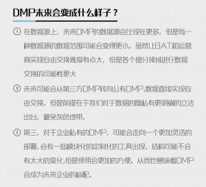 DMP的发展前景及对高层领导的要求