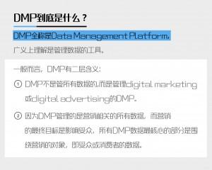 dmp的定义及其发展历史