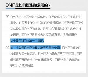 dmp的定义及发展
